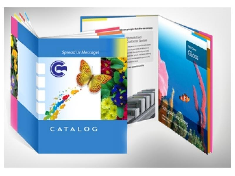 In catalogue cao cấp