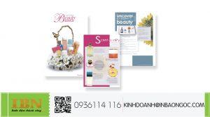in brochure mỹ phẩm