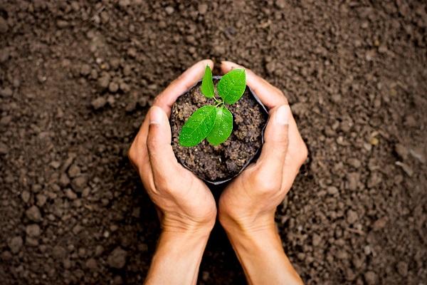 Bảo vệ môi trường tự nhiên